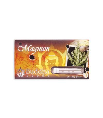 Семена сорта Buddha Magnum auto fem