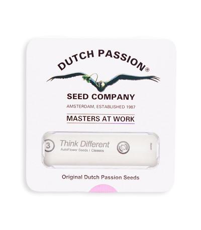 Семена сорта Think Different auto fem