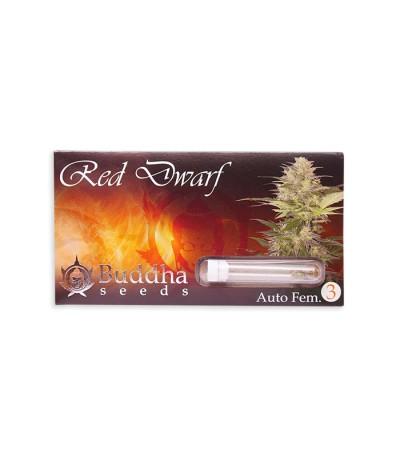 Семена сорта Red Dwarf auto fem
