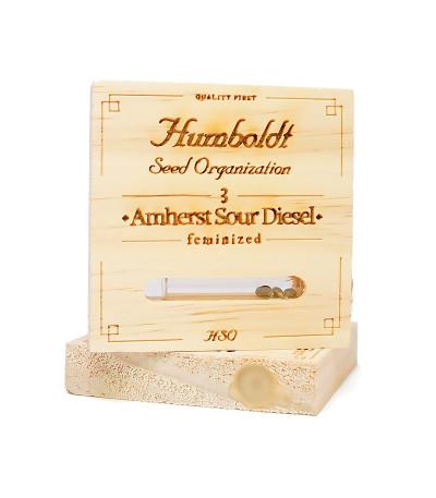 Семена сорта Amherst Sour Diesel fem (Humboldt Seeds)