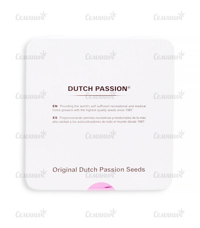 Семена сорта AutoBlueberry fem (Dutch Passion)