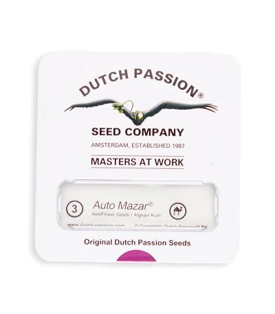 Семена сорта AutoMazar fem (Dutch Passion)